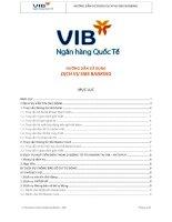 hướng dẫn sử dụng sms banking VIB