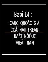 Bài 14 Các quốc gia cổ đại trên đất nước Việt Nam