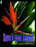 Unit 5: Lesson 2: A3-4/ p.53-54
