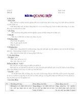 Bài 21 Quang hợp