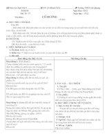 Giáo án Ngữ văn 9 (tuần 16 - 18)