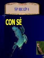 TĐ4-CON SẺ