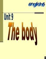 Unit 9: Body