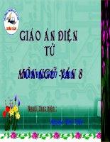 Tiết 37: Ôn tập truyện ký Việt Nam