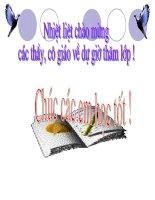 Tiết 6. Bài 6. VĂN HÓA CỔ ĐẠI