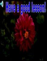Unit 11: Lesson 5: B5/ p 118