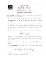 Bài tập Kinh tế lượng 2 có đáp án