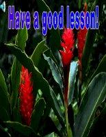 Unit 3: Lesson 1: A1-2/ p.30- 31