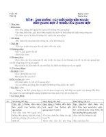 Bài 22 Ảnh hưởng của các điều kiện bên ngoài đến quá trình quang hợp. ý nghĩa của quang hợp
