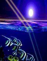 Bài 3: Khúc xạ ánh sáng
