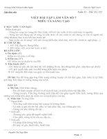 Giáo án Ngữ văn 6 (Tuần 31)