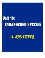 unit 10: endangered species- speaking