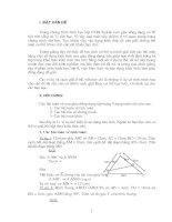 SKKN - Phân loại và hướng dẫn giải bài tập tam giác đồng dạng