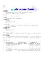Bài 20 Cấu tạo trong của phiến lá