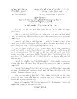 Quyết định Ban hành Chương trình phát triển thương mại điện tử  tỉnh Tiền giang đến năm 2015