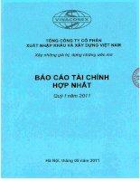 Bao cao tai chinh hop nhat quy I-2011