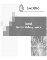 E-marketing: Quản trị xúc tiến thương mại điện tử