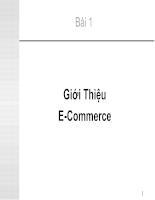 Giới thiệu e-commerce