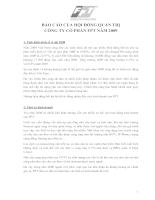 Báo cáo hội đồng quản trị công ty cổ phần FPT năm 2009
