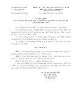 Quyết định Phê duyệt Kế hoạch phát triển Thương mại điện tử tỉnh Nghệ An giai đoạn 2009-2010