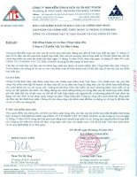Báo cáo kiểm toán về báo cáo tài chính hợp nhất CTCP vật tư hậu giang và các công ty con