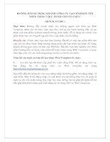 Hướng dẫn sử dụng nhanh công cụ tạo website tên miền tiếng việt dành cho tổ chức