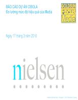 Báo cáo dự án CIBOLA Đo lường mức độ hiệu quả của Media Nielsen