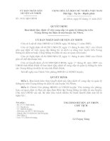 Quyết định Ban hành Quy định về việc cung cấp và quản lý thông tin trên trang thông tin điện tử của huyện An nhơn