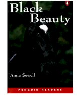Story-Black Beauty