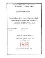 Khảo sát thành phần hóa học lá cây phan tả diệp Cassia Angustifolia, họ vang (Caesalpiniaceae) phần 0