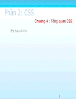 LTM1 Phan2 CSS - Chuong 4 Tong quan CSS