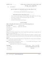 Biểu mẫu quyết định bổ nhiệm kế toán trưởng