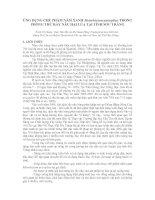 ỨNG DỤNG CHẾ PHẨM NẤM XANH Metarhizium anisopliae TRONG PHÒNG TRỪ RẦY NÂU HẠI LÚA TẠI TỈNH SÓC TRĂNG