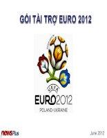 Gói tài trợ Euro sponsor 2012