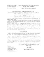 Quyết định  ban hành quy định chức năng, nhiệm vụ, quyền hạn và cơ cấu tổ chức của Sở Thương mại tỉnh Quảng Nam