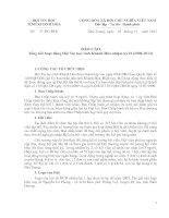 Báo cáo Tổng kết hoạt động Hội Tin học tỉnh Khánh Hòa nhiệm kỳ II (2008-2013)