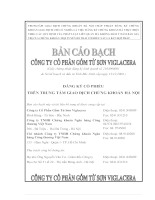 Báo cáo: công ty cổ phần gốm từ sơn Viglacera