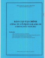 BAO CAO TAI CHINH 6 THANG DAU NAM 2012