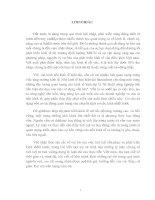Những lý luận chung về tích luỹ tư bản và ứng dụng lý luận đó vào thực tiễn Việt nam