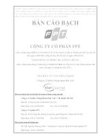 Bản cáo bạch công ty cổ phân FPT