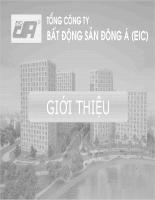 Giới thiệu nhà tài trợ bất động sản Đông Á