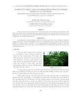 10.hoa.5.r.trang-daothivan