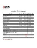 Báo giá các gói dịch vụ website
