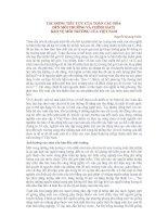 TÁC ĐỘNG TIÊU CỰC CỦA TOÀN CẦU HÓA  ĐẾN MÔI TRƯỜNG VÀ CHÍNH SÁCH  BẢO VỆ MÔI TRƯỜNG CỦA VIỆT NAM