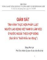 Giám sát tình hình thực hiện pháp luật người lao động Việt nam đi làm việc ở nước ngoài theo hợp đồng