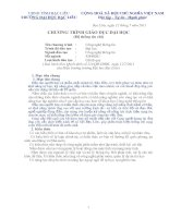 Chương trình giáo dục đại học ngành công nghệ thông tin (2)
