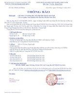 Thông báo về việc học ngoại ngữ, tin học trên địa bàn huyện Sơn hòa