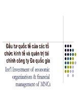 Đầu tư quốc tế của các tổ chức kinh tế và quản trị tài chính công ty đa quốc gia