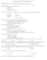 516 CAU  TRAC NGHIEM VAT LI LOP 10 NC