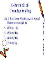 Bai 8 Quang hop o thuc vat
